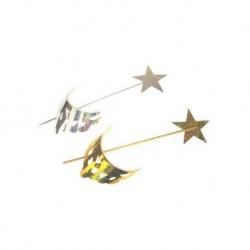 Kit baguette étoile+diadème