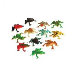 12 grenouilles