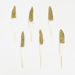 10 plumes blanches et dorées