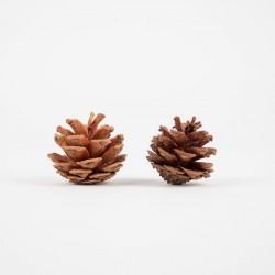 2 décorations de Noël- POMME DE PIN  NATUREL