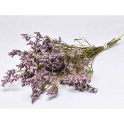 Limonium Mini 40cm violet