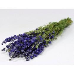 Bouquet Delphinium Bleu 65cm