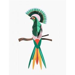 Décoration murale-Oiseau de paradis Gili