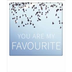 Carte pola - Oiseaux You are my favorite