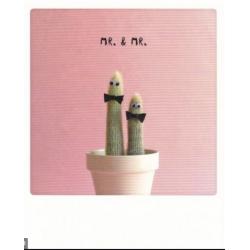 Carte pola MR &Mr Cactus