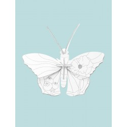DIY Insecte à monter et à colorier - Papillon