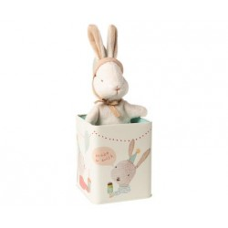 Petit lapin dans sa boite