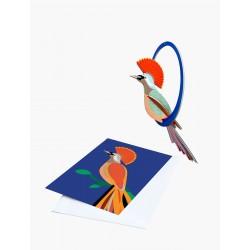 Carte pop out - Oiseau Obi