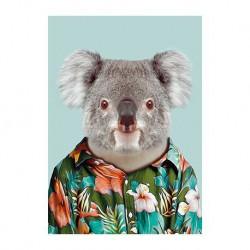 carte zoo - Koala