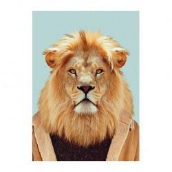 carte zoo - lion