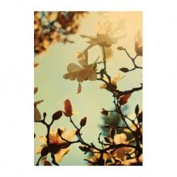Carte fleur - Magnolia vintage