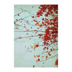 Carte - Feuilles d'automne