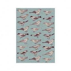 Carte - Oiseaux