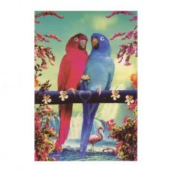 Carte vintage - Perroquets