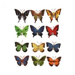 12 papillons