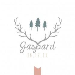 """Faire-part """"Gaspard"""" PDF"""