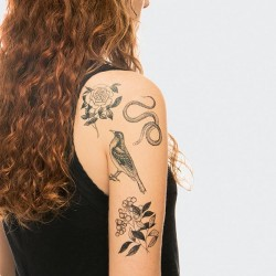 1 planche de tattoo: Faune et Flore