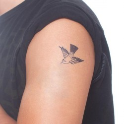 Tattoo éphémère - Lot de 2 - Cartolina Bird